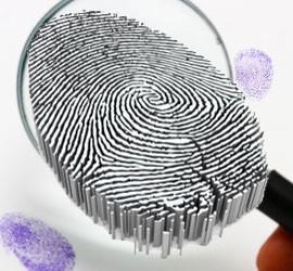 Fingerprints & Brain